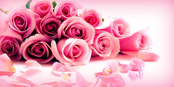 Rose Day - Do you know what color and how many you should gift?